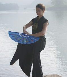 Doppelfächer Tai Chi